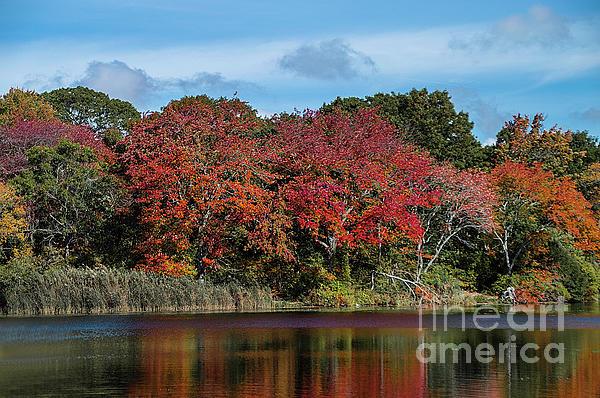 Reflections Photograph - Lake Reflections by Judy Hall-Folde
