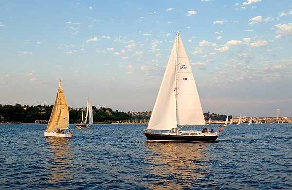 Seattle Photograph - Sailing by Tom Dowd