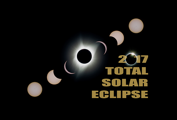 Total Photograph - 2017 Total Solar Eclipse Phases by David Gn