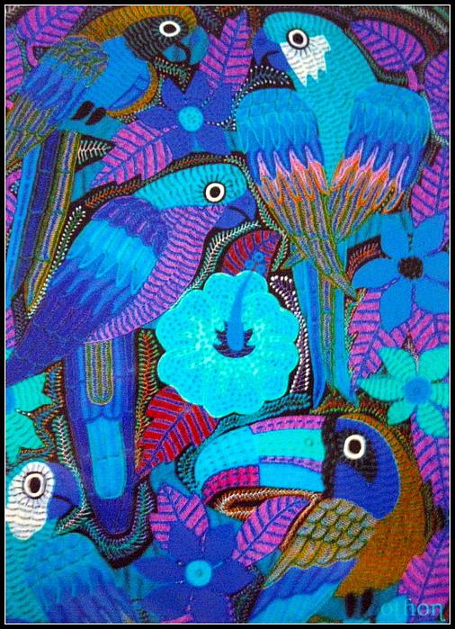 Kathy Othon - Birds of Panama