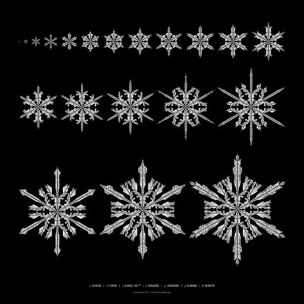 Snowflakes Digital Art - Snowflake Simulation by Martin Krzywinski