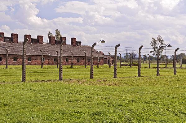 Camp Photograph - Auschwitz Birkenau Concentration Camp. by Fernando Barozza