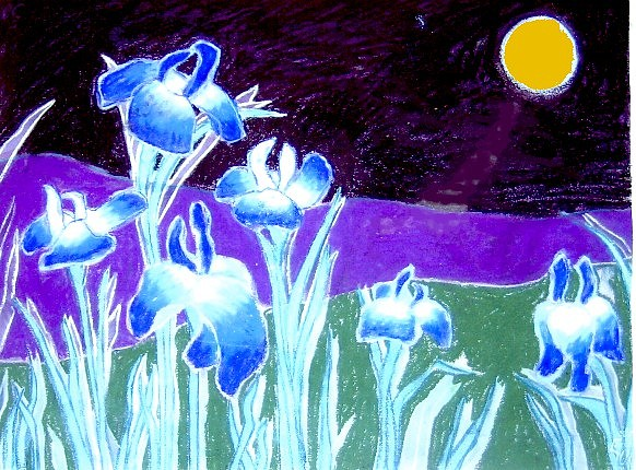 Pastels Painting - 6 Iris By Moonlight by Bets F