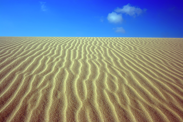 Sand Photograph - Desert by MotHaiBaPhoto Prints