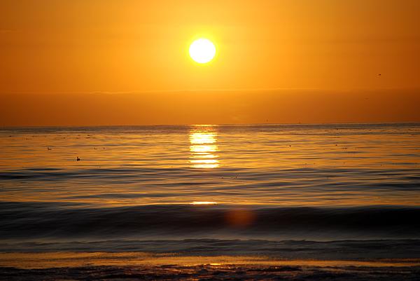 Carmel Sunset Photograph by Harvey Barrison