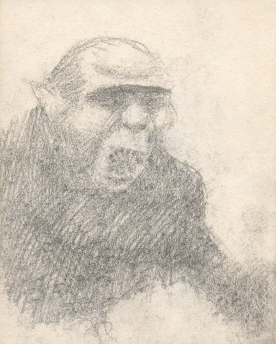 Small Drawing - Untitled by T Ezell