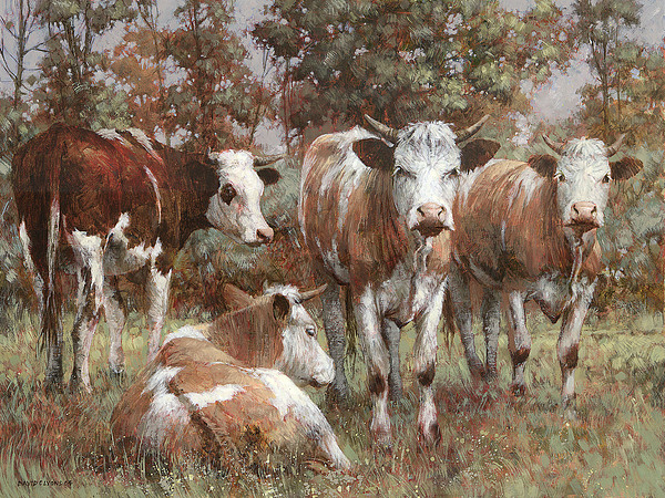 Cows Painting - A Cautious Glance by David Lyons