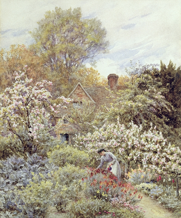 Cottage; Female; Gardener; Rural Scene; Country; Countryside; Home; Path; Wildflowers; Roses; Tulips; Irises; Magnolia; Springtime; Season; Picturesque; Idyllic; House; Female Painting - A Garden In Spring by Helen Allingham