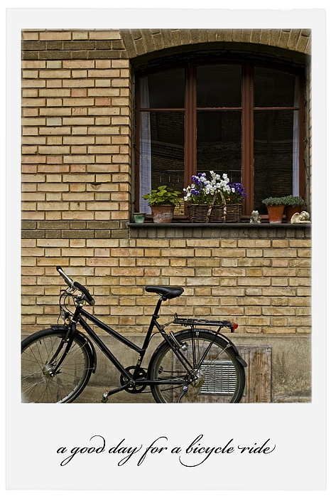 Bicycles Photograph - A Good Day For A Bicycle Ride by Dania Reichmuth
