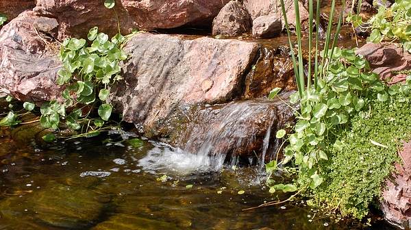 Waterfall Photograph - A Little Waterfall by Susan Heller