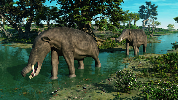 Earth Digital Art - A Pair Of Platybelodon Grazing by Walter Myers