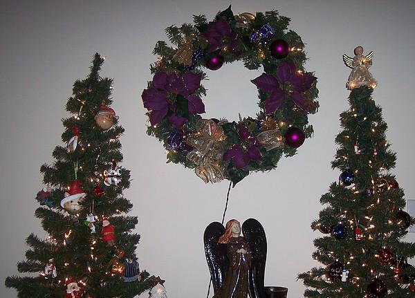 Trees Photograph - A Purple Christmas by Jessica Sanders