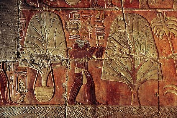 Outdoors Photograph - A Relief Of Men Carrying Myrrh Trees by Kenneth Garrett
