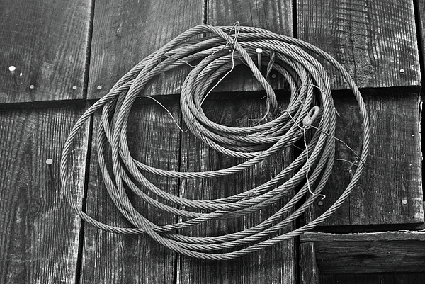 Wire Photograph - A Study Of Wire In Gray by Douglas Barnett