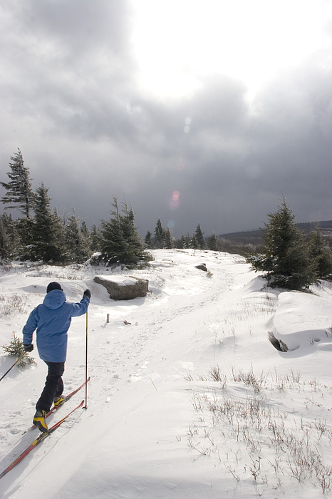 Outdoors Photograph - A Woman Cross Country Skiing by Skip Brown