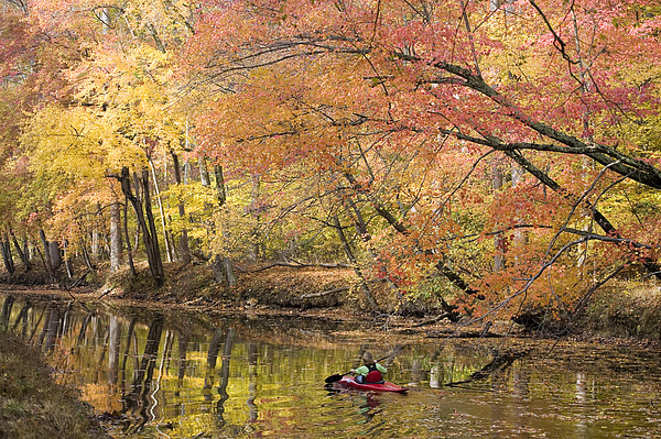 One Person Photograph - A Woman Kayaking Down The Chesapeake by Skip Brown