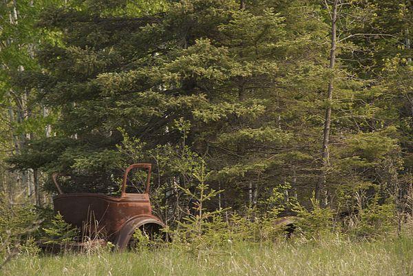 Abandoned Photograph by Jack Gantzel