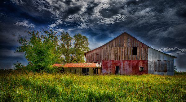Barn Photograph - Abandoned Through The Reeds by Bill Tiepelman