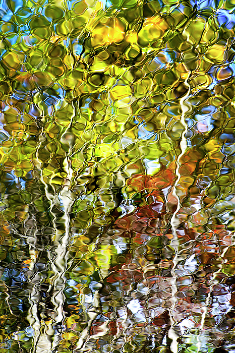 Abstract Tree Reflection Art for Sale