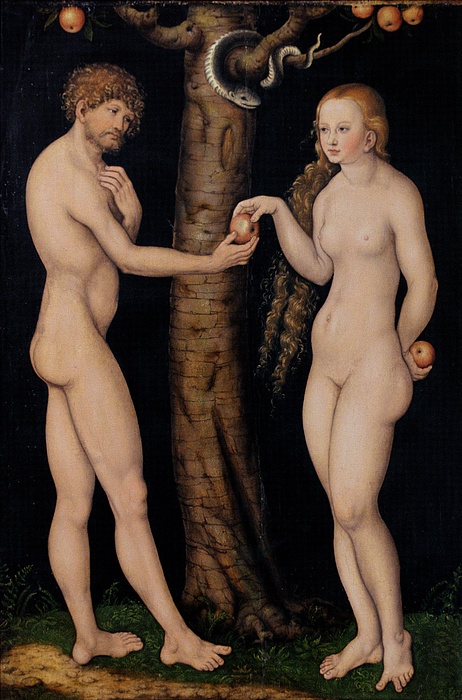Serpent; Old Testament; Genesis; Adam; Eve; Apple; Temptation; Snake; Tree; Fruit; Knowledge; Nude; Renaissance; Original Sin; Northern Renaissance; Renascence; Offer; Offering; Male; Female Painting - Adam And Eve In The Garden Of Eden by The Elder Lucas Cranach
