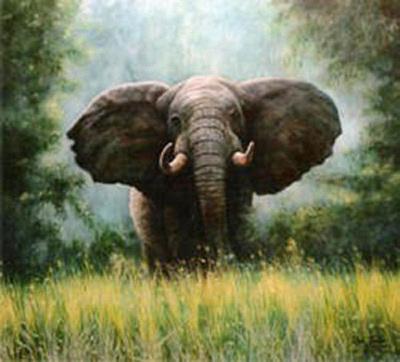 Spitfire Painting - African Elephant by Riek  Jonker
