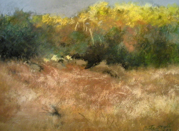 Landscape Pastel - After The Rain by Anita Stoll