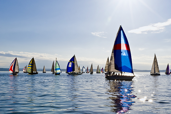 Seattle Photograph - Afternoon Sailing by Tom Dowd