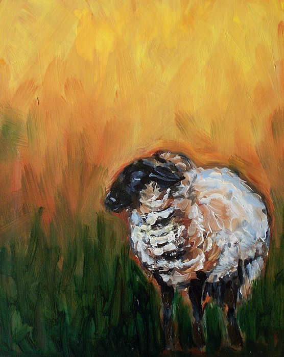 Sheep Painting - Aiden by Sheila Tajima