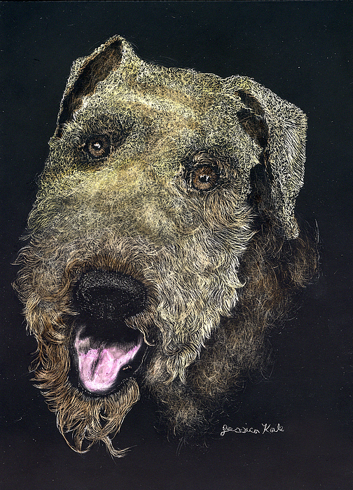 Airdale Terrier Mixed Media - Airedale Terrier Portrait by Jessica Kale