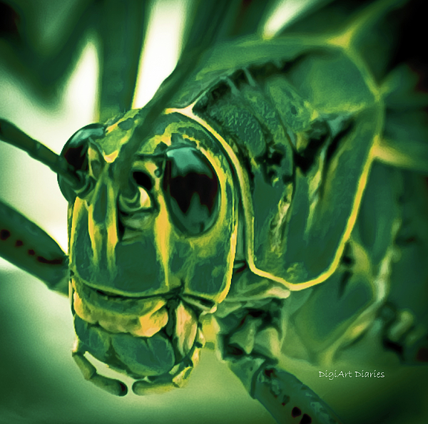 Grasshopper Photograph - Alien by DigiArt Diaries by Vicky B Fuller