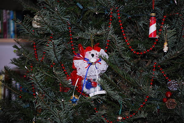 Ornament Photograph - All American Bear by Mary Griffin
