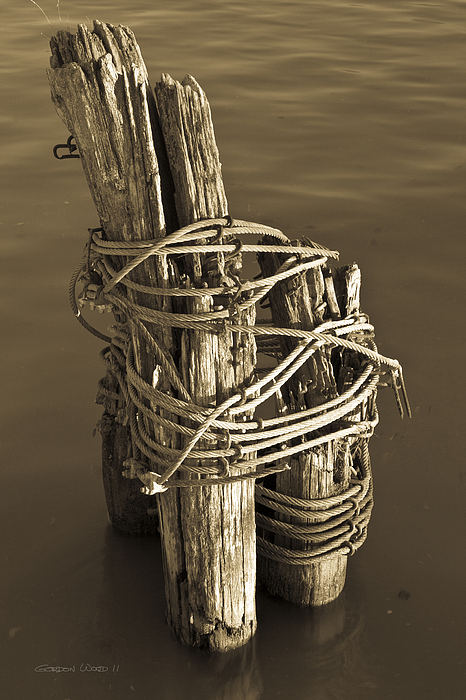 Great Lakes Photograph - All Tied Up by Gordon Wood