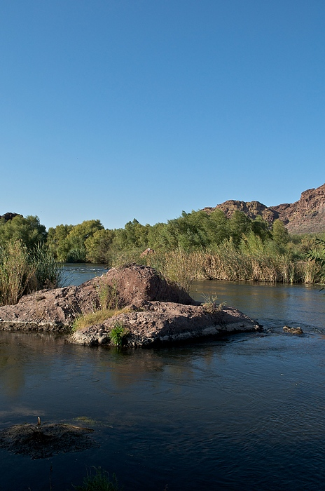 Arizona Photograph - Along The Verde River 13 by Susan Heller