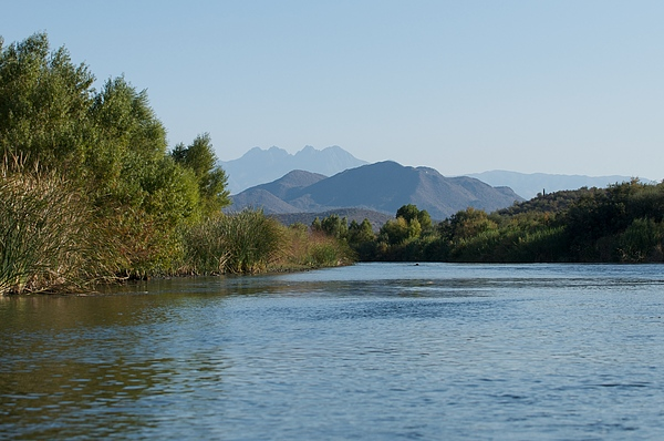 Arizona Photograph - Along The Verde River 6 by Susan Heller