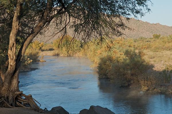 Arizona Photograph - Along The Verde River 9 by Susan Heller