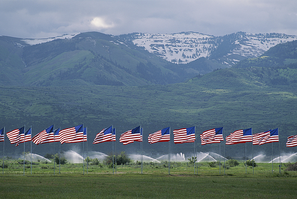 Day Photograph - American Flags Honoring Veterans by James P. Blair