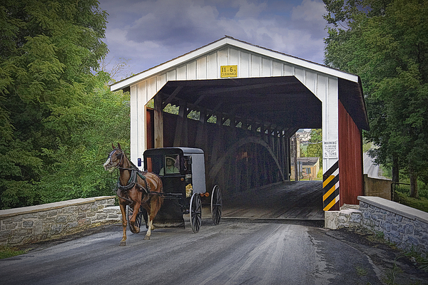 Randall Nyhof - Amish Buggy with covered bridge