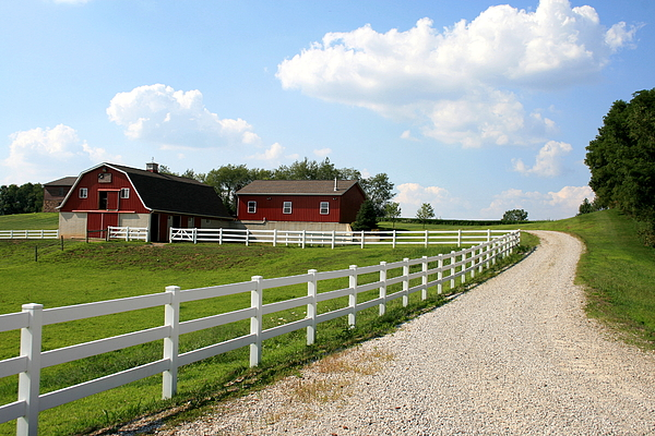 Farm Photograph - Amish Farm by Gary Bydlo
