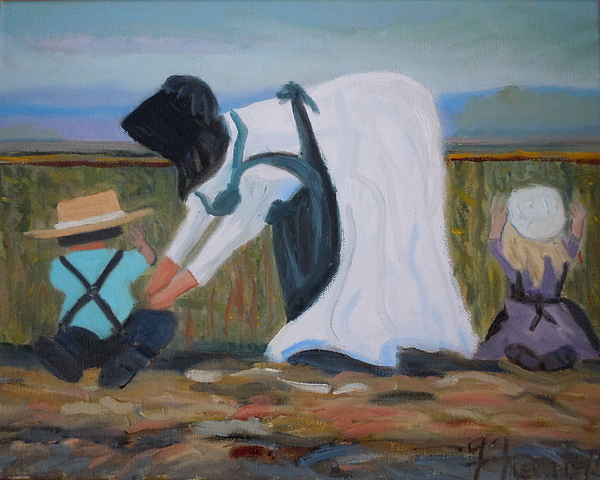 Amish Painting - Amish Picking Peas by Francine Frank