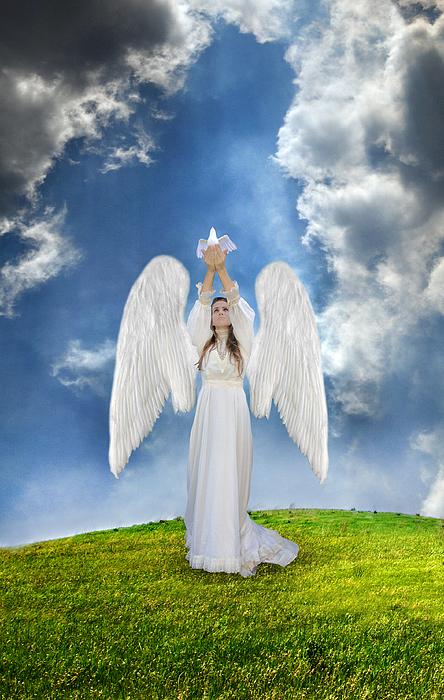 Angel Photograph - Angel Releasing A Dove by Jill Battaglia