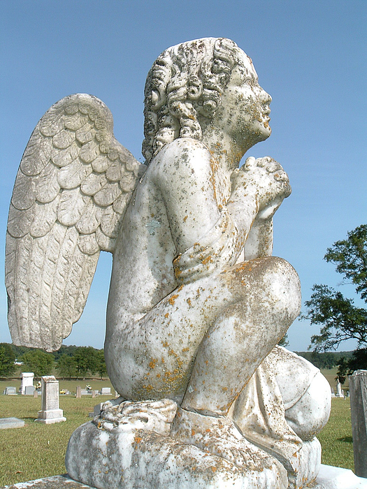 Angel Photograph - Angels On The Side by Amanda Shelburne