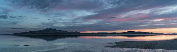 2017 Photograph - Antelope Island Panoramic Sunset by Justin Johnson