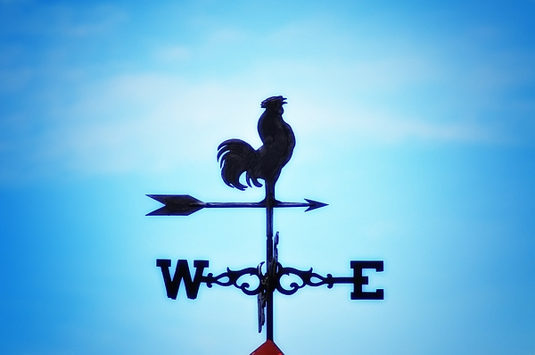 Weather Vane Photograph - Any Way The Wind Blows Home by Bill Cannon