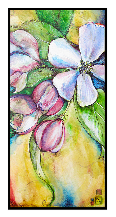 Apple Blossom Painting - Apple Blossom by Clare Catling