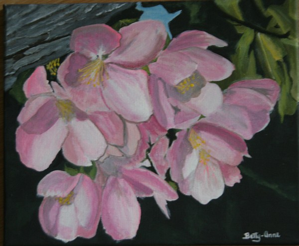 Flowers Painting - Apple Blossoms by Betty-Anne McDonald