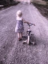 Bicycle Photograph - As I Travel This Road All Alone by Trisha Scrivner