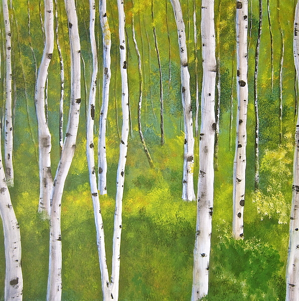 Silver Birch Painting - Aspen Forest by Heather Matthews