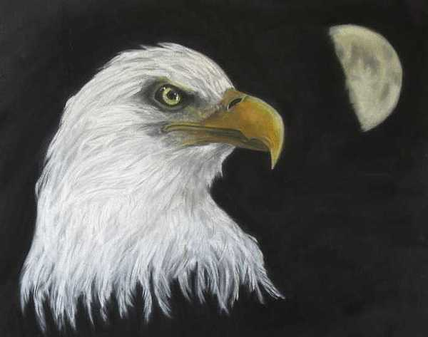 American Bald Eagle Painting - At Twilights Last Gleaming by Corinne Dell Aria