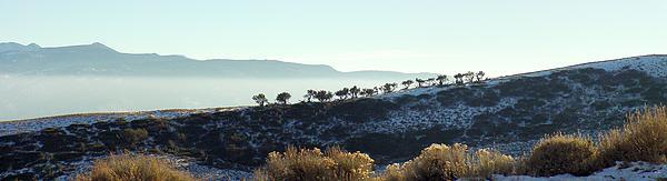 Peavine Mountain Photograph - Atop Peavine Mountain by Edward Hass