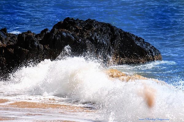 Beach Photograph - Australia Beach 2738 by PhotohogDesigns